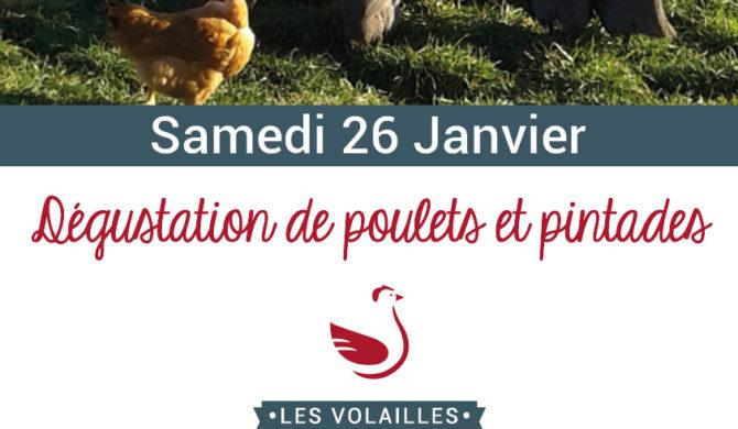 Dégustation de poulets & pintades de Ruols à Rodez !